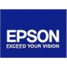 Epson T087 Yellow Ink Cart Suits R1900