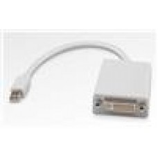 8Ware Mini DisplayPort to DVI Adapter 20cm 20Pin to 24Pin